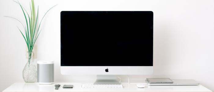 Plante et ordinateur pour illustrer un site web écologique