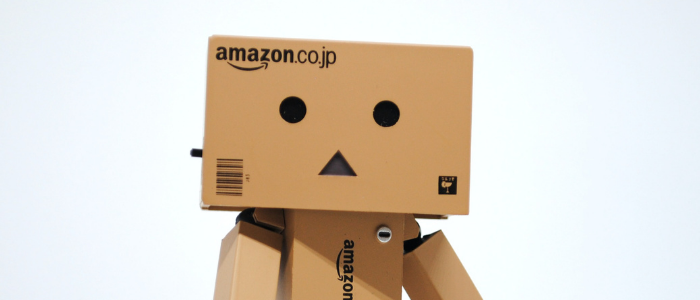 Perosnnage d'Amazon