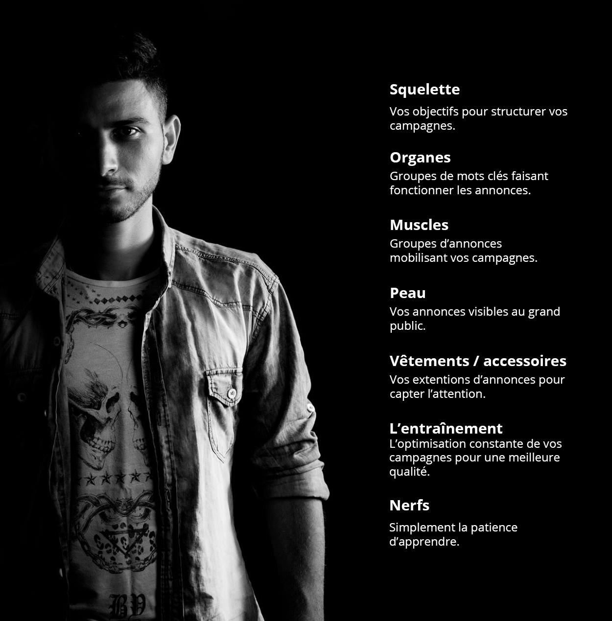 anatomie d'une campagne AdWords