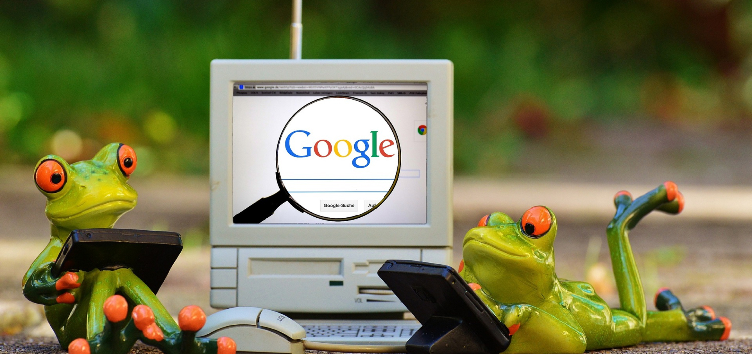 Google Seo Frogs 1