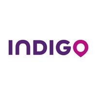 indigo_